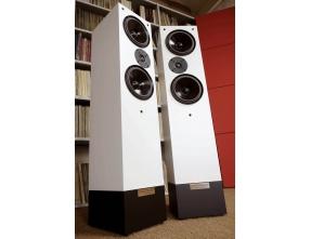 Living Voice Auditorium R25 Anniversary Loudspeakers Pair