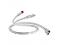 QED Signature Audio 40 Interconnect Cable Pair [2nd hand]