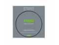 Rega Reference EBLT Drive Belt Upgrade for all Rega Turntables