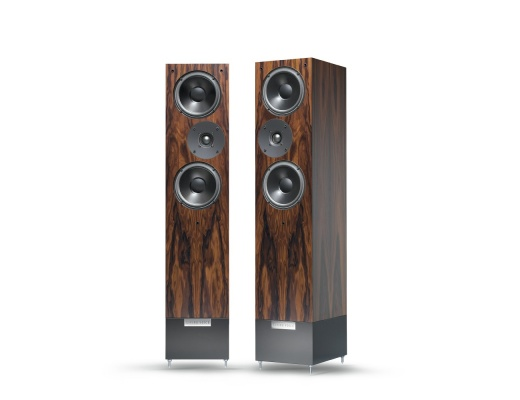 Living Voice IBX-R3 Loudspeakers Pair