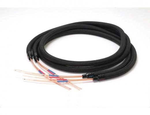 Acoustic Revive SPC-TripleC Speaker cables